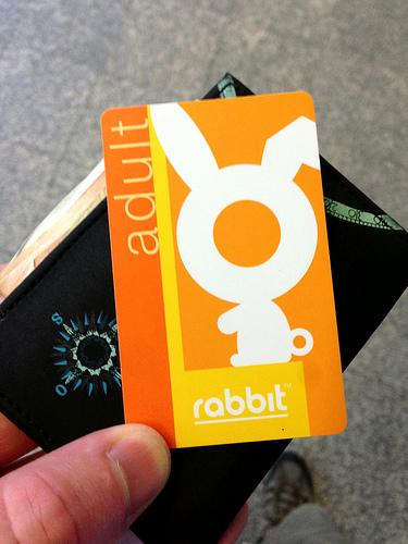 Adult_Rabbit_card